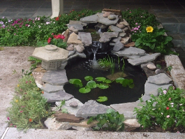 Pond supplies for Fish pond materials